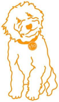 tfo shamrock dog